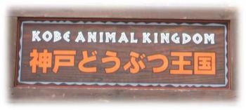 【外出デー】神戸どうぶつ王国
