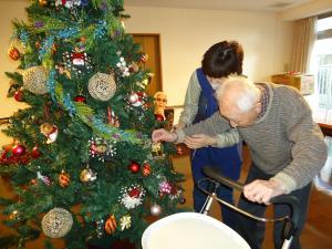 ブログ「フクロウとクリスマスツリー」